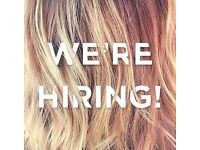 Qualified Hairdresser/Hairstylist Required