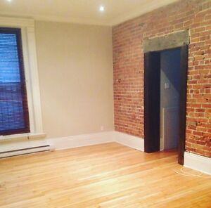 Big 3 1/2 for rent in Mcgill Ghetto - prime location