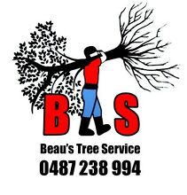 BTS Beau's Tree Service Dora Creek Lake Macquarie Area Preview