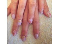 Mobile gel nails / manicure / pedicure