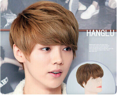 Boys Wigs Men's Short Layers Synthetic Hair Cosplay Party Daily Wigs - Boy Wig