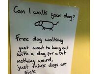 FREE dog walking
