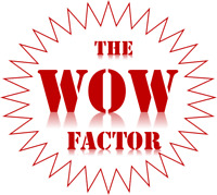 Need some WOW FACTOR marketing for your business?
