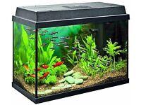 Jewel Rekord 70 litre aquarium + accessories