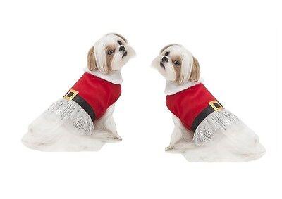 Urlaub Kleid für Hunde S - M Tüllrock Funkelig Silber Pailletten