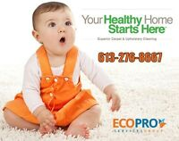 Kids Friendly Carpet & Upholstery Cleaning. Safe For Your Family