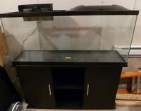 Fish tank with Stand 55 gallons