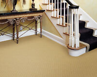 BUDGET CARPET CLEANING