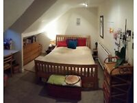 Archway, Friendly Flatshare - Room £561 pcm