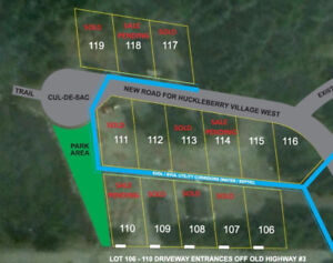 Tiny Home or Cabin Building Lot for Sale near Hope, BC - H106