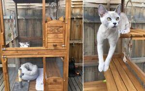 Cat Enclosure - near new!