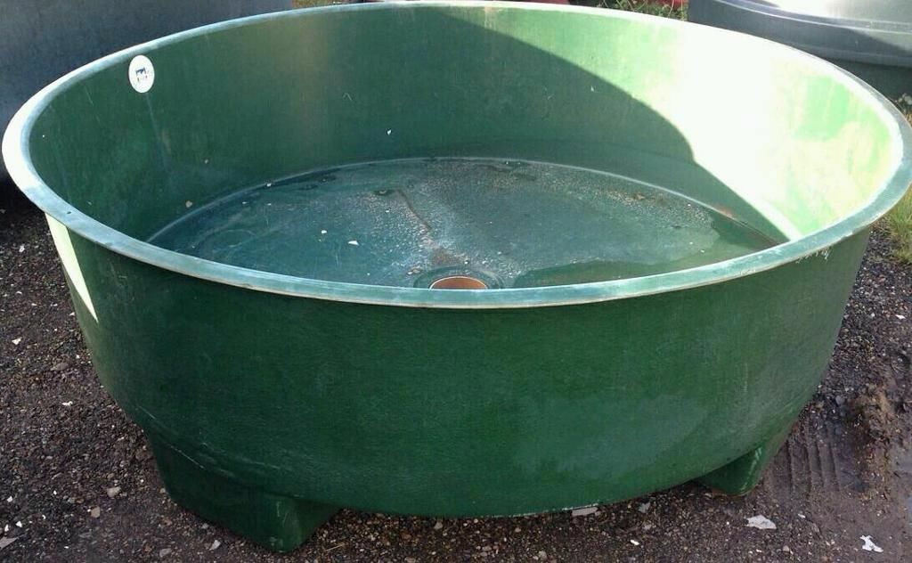 Large fibreglass koi vat tank fish pond carp in for Koi tank size