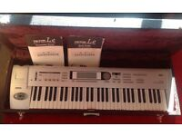 KORG TRITON Le workstation Synthesizer and heavy duty professional gig case with lining