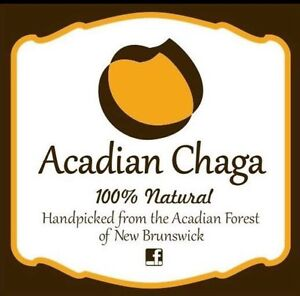 100% Pure & Natural Acadian Chaga Tea