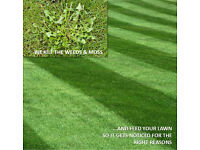 [FREE] WEED & FEED LAWN TREATMENTS - LAWN - LAWNCARE - WEED KILLER - GARDENING - GARDEN