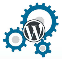Experienced WordPress designers, packages starting at $65