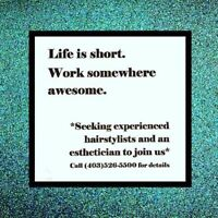 Motivated, Team Oriented Stylist Wanted