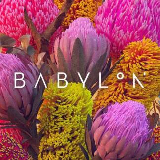 Babylon Ticket