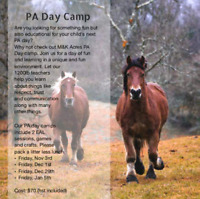 Equine Assisted Learning PA Day Camp
