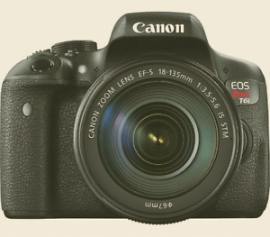 Canon EOS Rebel T6i with 18-55mm and 55-250mm lenses
