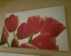 2 x Canvas