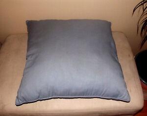 2 Big Cushions