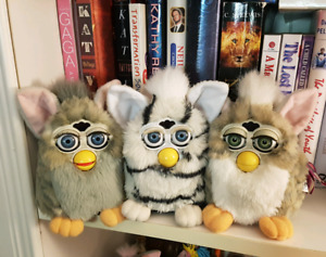 Looking to buy furbys