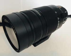 Panasonic (compatible with Olympus) 100-400mm zoom lens