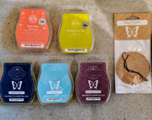 Scentsy Lot (all new/full)