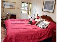 Furnished, 1-bed Granny Flat