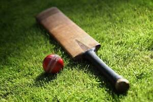 Cricket - Practice / Net Sessions West Ryde Ryde Area Preview