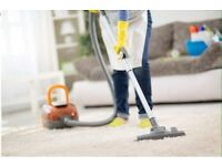 Domestic House Cleaner middlesbrough
