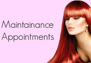 Hair Extension Maintenance South Maclean Logan Area Preview