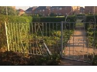 White wrought iron fence and gate