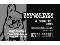 Dog Walker - Natalie Tuck - looking for more beautiful dogs to walk! Rewards 10th walk free!