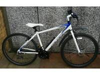 Gents boys raleigh all terrain mountain bike excellent condition