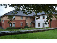 Quality, affordable flat for the over 60s - available now