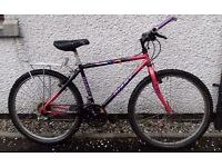 Giant Coldrock 17 inches Mountain Bike