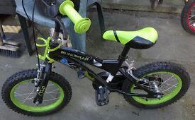 Boys Ben Ten Bike 14inch