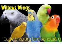 Safe home for cage and aviary birds