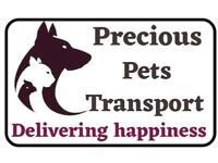Precious Pets Transport.
