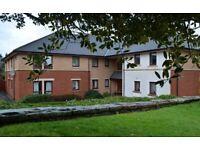 Available now, modern, comfortable two bedroom flat in amenity (50+) development in Lockerbie