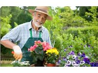 Part time gardener required for small garden and drive once a week