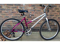 17 inch Lincoln Gliter ladies bicycle mountain bike cycle