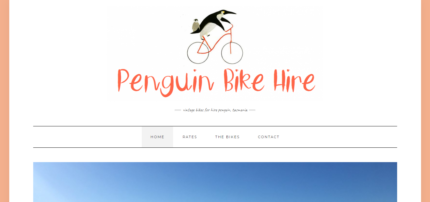 Bike Hire Business For Sale