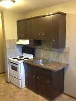 University Area - Completely Renovated Suite March 1st