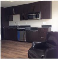 Gorgeous all included furnished bachelor available now!