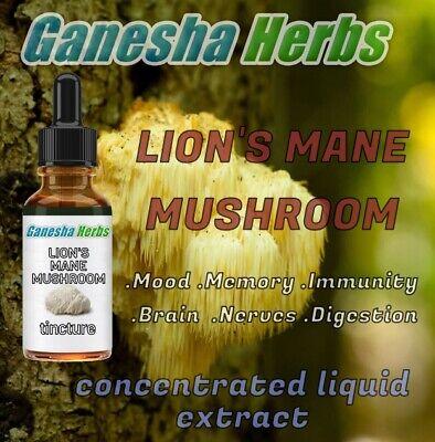LION'S MANE MUSHROOM  High Potency 20:1 Extract  Liquid Tincture 1 ounce High Potency Liquid Extract