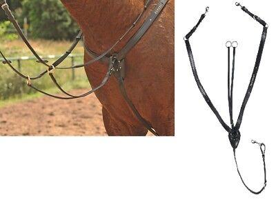 Vorderzeug + Martingal Leder Brillanten schwarz Ledervorderzeug gold oder silber ()