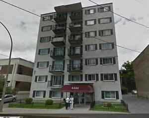 3-1/2, LaSall,795$ includ:heating,hot water,network,river view..